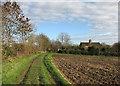 TL4058 : Near Whitwell Farm in November by John Sutton