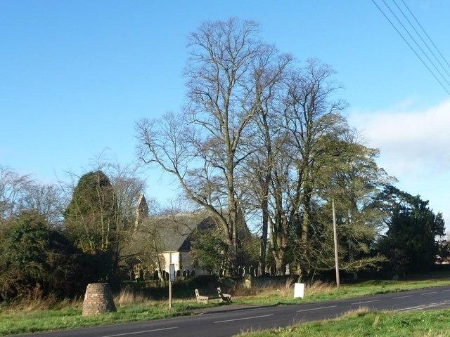 Churchyard trees, Flaxton
