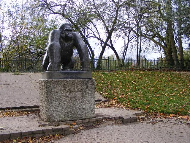 Park Gorilla