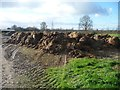 SE6564 : Muck heap, north of East Lilling Grange by Christine Johnstone