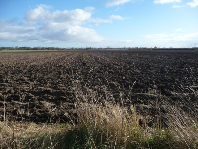 Recently ploughed field, south of West Lilling