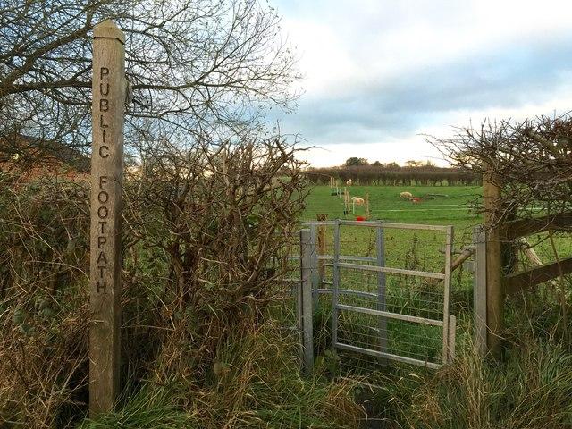Halmer End: footpath off Shraleybrook Road
