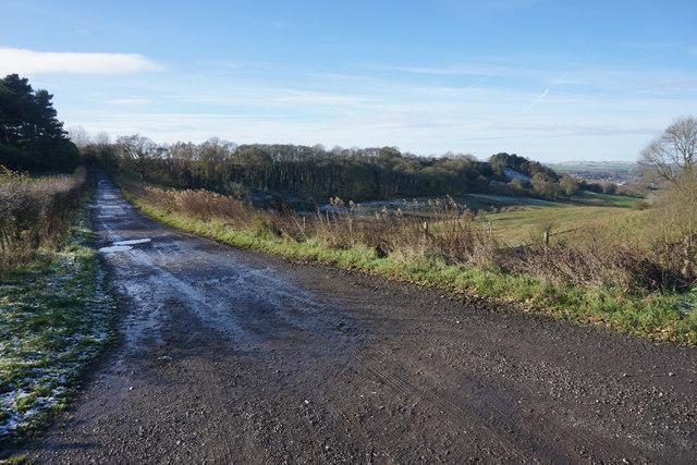 Track towards Bowling Green Farm