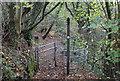 ST1898 : Sirhowy Valley Walk, below B4251, Oakdale by M J Roscoe