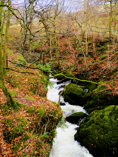 Stock Ghyll, Above the Waterfall