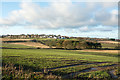 NZ1947 : Field on west side of Standagainstall Plantation by Trevor Littlewood