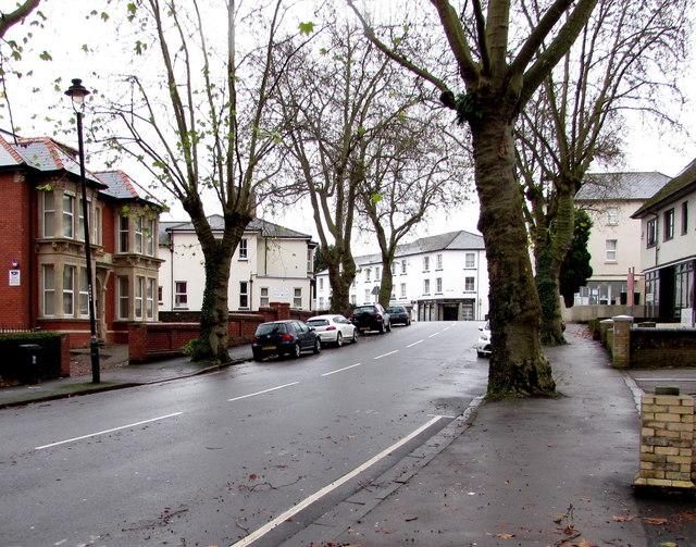 Tree-lined Clytha Park Road, Newport