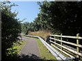 SY3593 : Path near Charmouth roundabout by Derek Harper