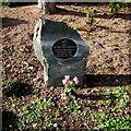 SJ2207 : Iraqi War Memorial Stone in Welshpool by Jaggery