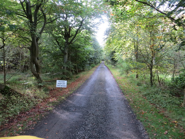 Driveway from Coldtown to Road (A68)