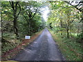 NY8888 : Driveway from Coldtown to Road (A68) by Peter Wood