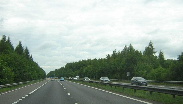 M3 motorway passing through Itchen Wood