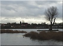 SK4976 : A view of Harlesthorpe Dam by Neil Theasby