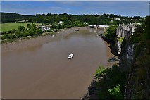ST5394 : Chepstow Castle: The river Wye from the upper bailey by Michael Garlick