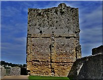 ST5394 : Chepstow Castle: Great tower west aspect by Michael Garlick