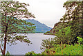 NS1493 : Northward beside Loch Eck near Whistlefield Inn by Ben Brooksbank