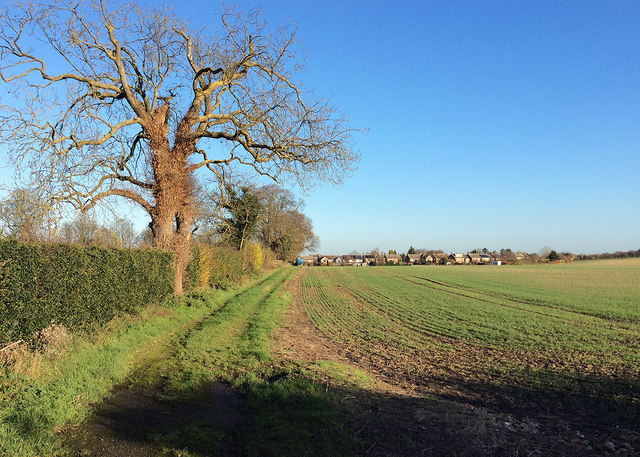 December on the south-eastern edge of Cambridge