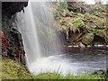 SE5197 : Waterfall, Prod Dales by Mick Garratt