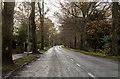 TF2063 : Entering Woodhall Spa on B1191 by J.Hannan-Briggs