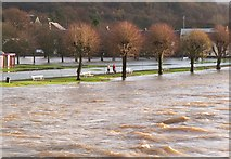 NT2540 : Flooding at Tweed Green, Peebles by Jim Barton