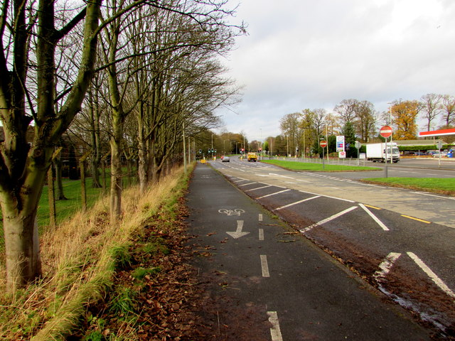 Tree-lined cycle route, Cosford