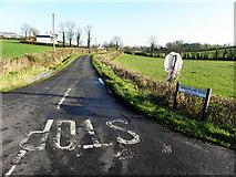 H7447 : Tannaghlane Road, Derrygooly by Kenneth  Allen