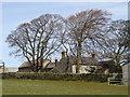 NZ1044 : North Farm, West Butsfield by Robert Graham