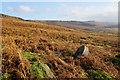 SK2284 : Discarded millstone below Stanage Edge by Bill Boaden