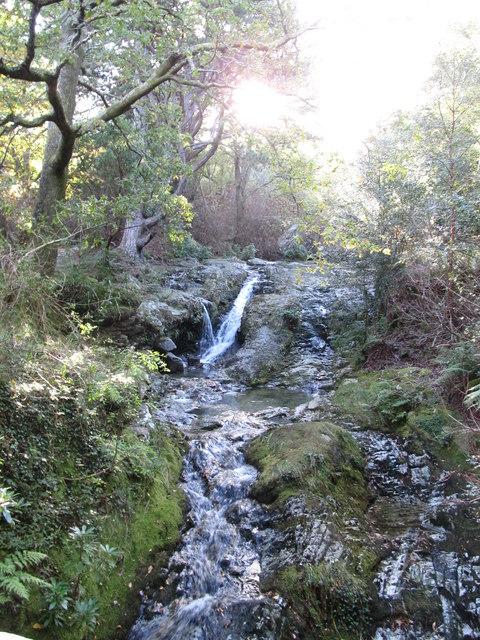 Rapids above Donard Bridge