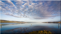 NH5658 : Three wooden posts in the Cromarty Firth at High Tide by Peter Moore