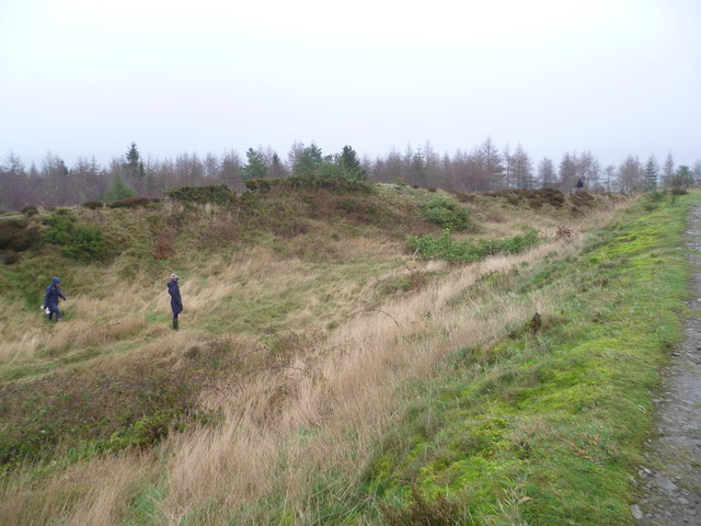 On Bury Ditches hillfort ramparts