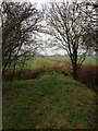TL2850 : Near East Hatley by Dave Thompson