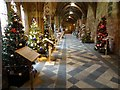 SO8454 : Christmas trees in Worcester Cathedral #3 by Philip Halling
