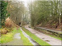 SK1971 : Railway platforms at Great Longstone by Trevor Littlewood