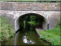 SJ8906 : Park Bridge No 8, south of Brewood, Staffordshire by Roger  Kidd