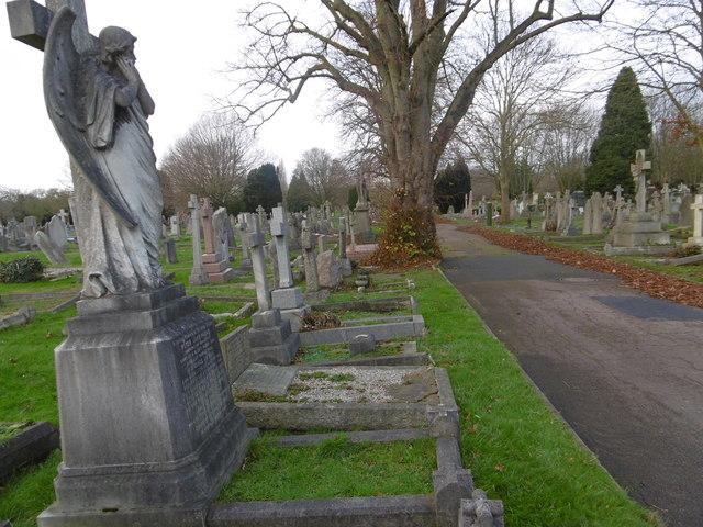In Putney Vale Cemetery