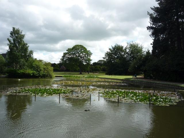 Lake near Langwith