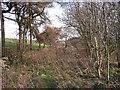 SK1463 : Old line into Parsley Hay by Ian Calderwood