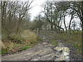 TL0781 : Muddy track to Common Wold and Barnwell Wold by Richard Humphrey