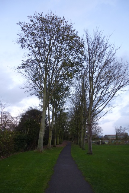 Path to the footpath