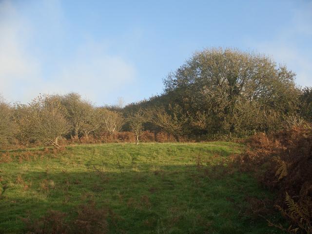 Valley side, Cwm y Befos (2)