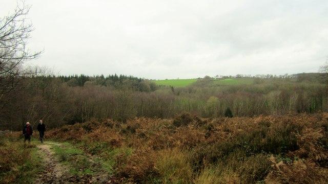 Cinderhill