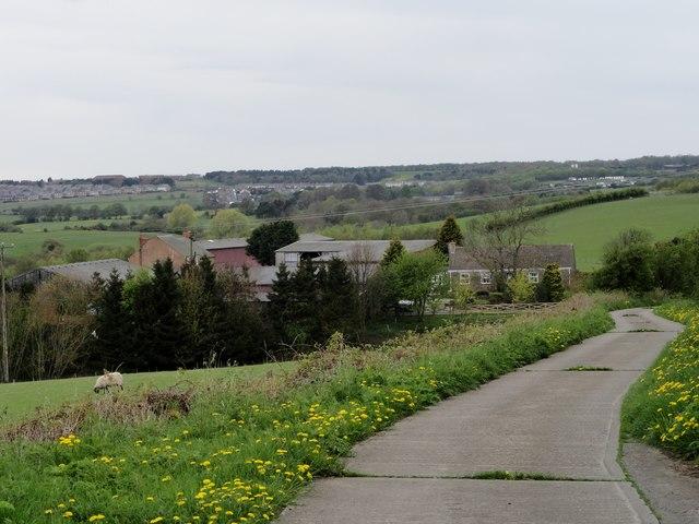 Woody Close Farm