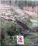 J3630 : Log piles in Donard Wood by Eric Jones