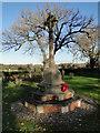 TG2924 : Sloley War Memorial by Adrian S Pye