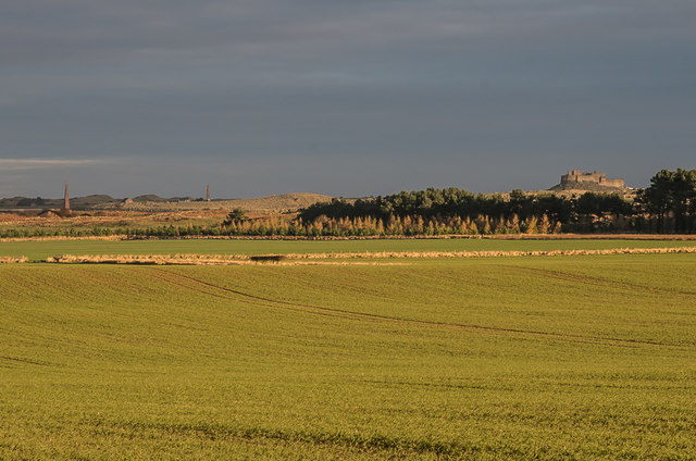 Towards Guile Point and Lindisfarne Castle