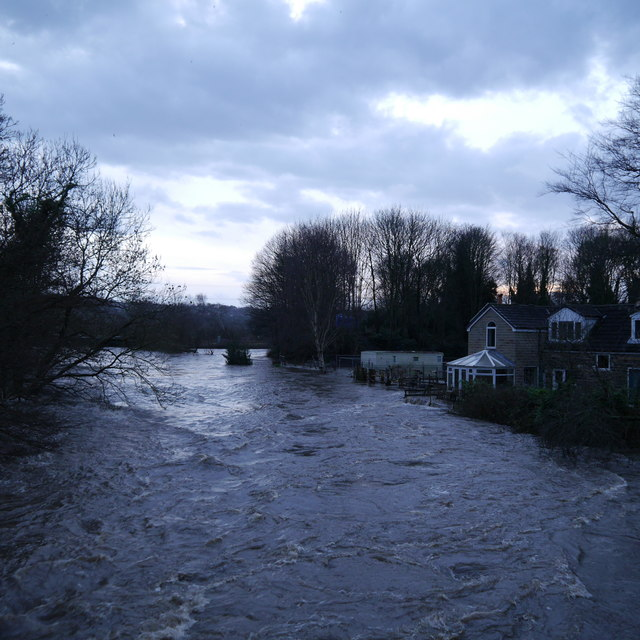 Extreme flood on the River Aire, from Newlay Bridge (3)