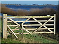 TL5191 : Open gate - The Ouse Washes near Welney by Richard Humphrey