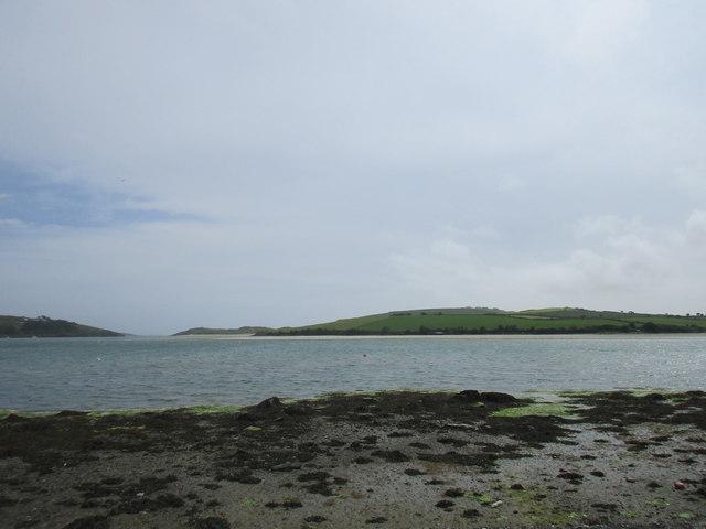Estuary near Clonakilty