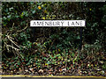 TL1314 : Amenbury Lane sign by Adrian Cable